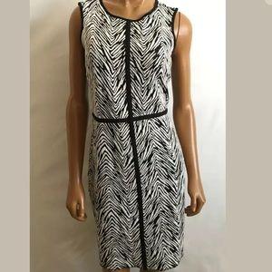 Ann Taylor animal print zebra stripe dress 6P